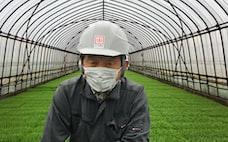 稲作にもコロナ禍のリスク 危機が経営を鍛える