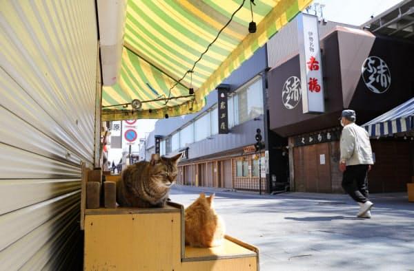 観光客の姿が消えた伊勢神宮内宮前のおはらい町通り。休業中の土産物店の棚で猫がくつろいでいた(25日午前、三重県伊勢市)