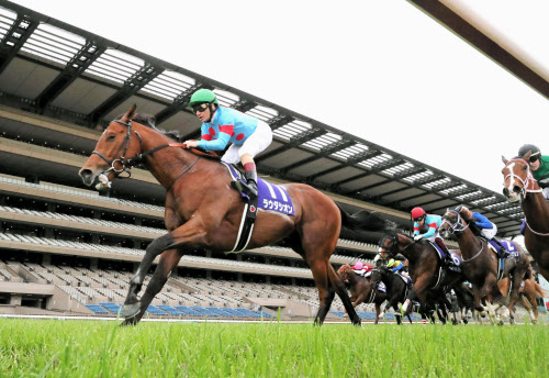 ラウダシオンが重賞初勝利 競馬のNHKマイルカップ: 日本経済新聞
