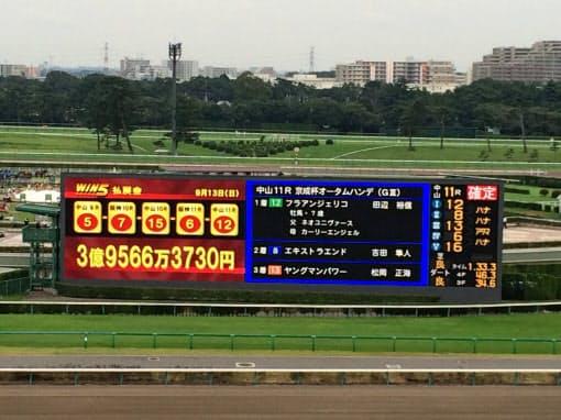 京成杯オータムハンデキャップは接戦の末、13番人気のフラアンジェリコが制する大波乱のレースだった