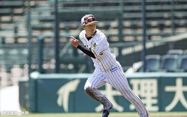 走塁練習する阪神・近本(28日、甲子園)=球団提供・共同