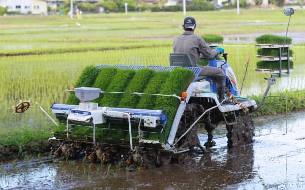 千葉県での田植え風景