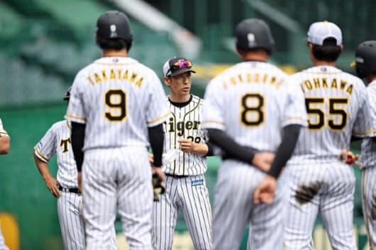 阪神の矢野監督(中央)は「張り切る選手のケガが心配」と語る=阪神球団提供