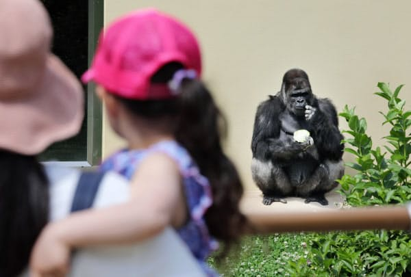 再開した東山動植物園を楽しむ人たち(2日、名古屋市千種区)