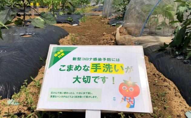 市民農園の「シェア畑」。こまめな手洗いを立て札で促している(東京都足立区)