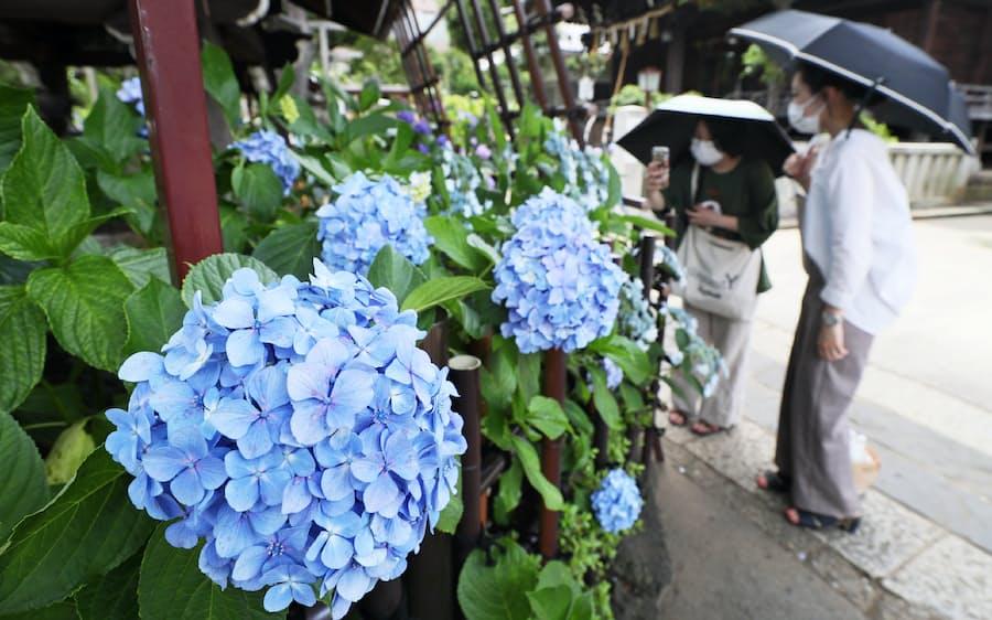 梅雨入り 地方 た は の 甲信 最も の 関東 早かっ