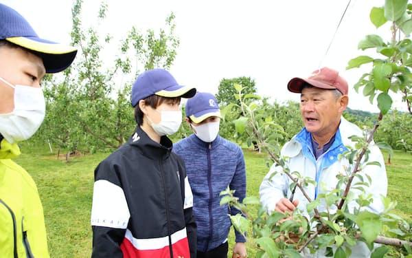 農家(右端)から摘果作業の研修を受ける福島大の学生