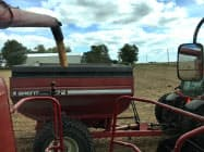 アイオワ州農家 トウモロコシ収穫の模様