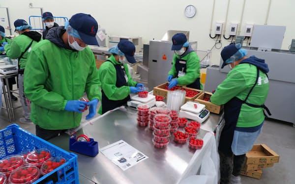 大手卸の国分はスーパーに代わって生鮮食品のカットや包装を担う(神奈川県川崎市)