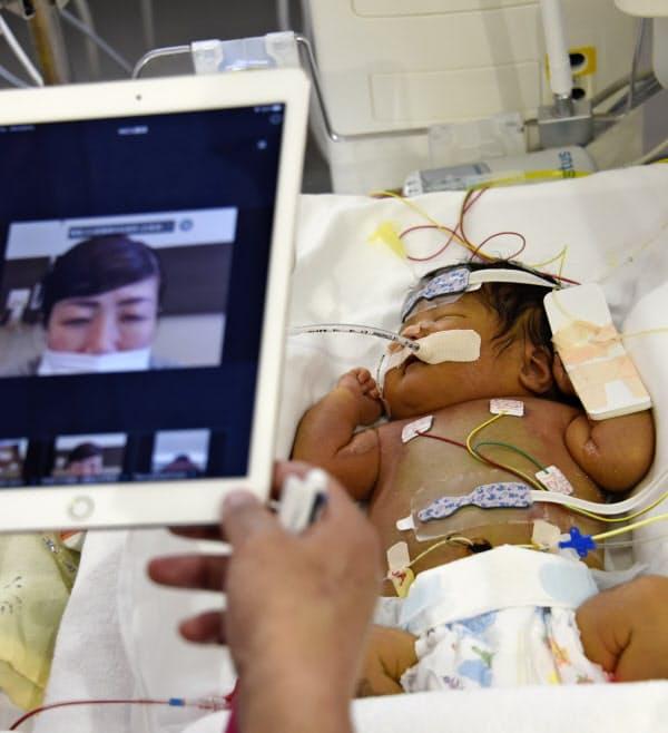 画面越しに子どもとオンライン面会する母親=聖隷浜松病院提供