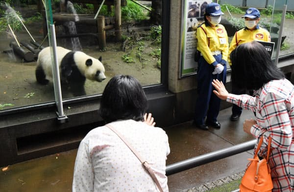 再開した上野動物園でパンダに手を振る人たち(23日午前、東京都台東区)=森山有紗撮影