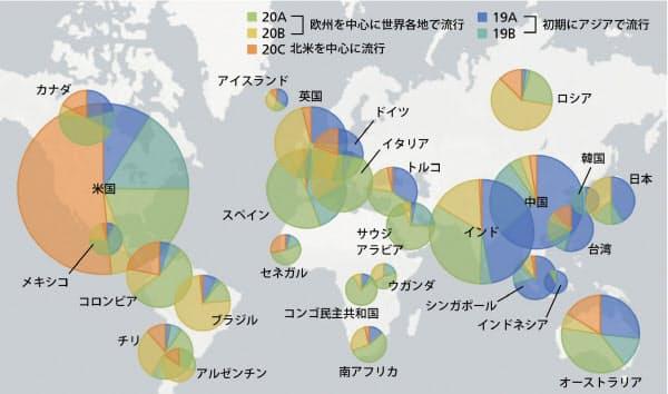 世界のウイルスを5グループに分けてその割合を示した図。6月11日時点のネクストストレインの図を改変し、一部の国を抽出した。円の大きさは集まっているデータの数を示す。