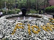 約3万本の愛知県産の菊を使用している。(東京・丸の内のブリックスクエア一号館広場