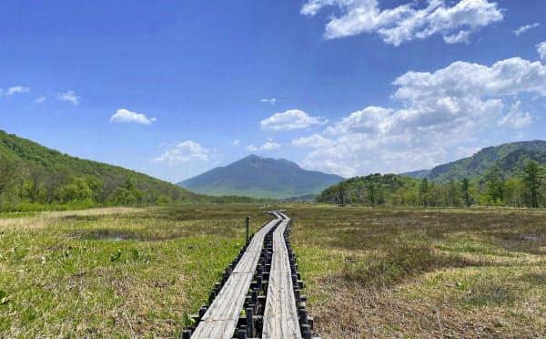 登山者がいない尾瀬国立公園の尾瀬ケ原(6月上旬)=共同
