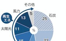 電力変える「3つのD」 NTT、再生エネ本格参入