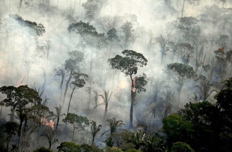 アマゾンの熱帯雨林の火災は2019年に急増した=ロイター