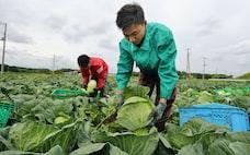 日本の農業 どう守る(複眼)