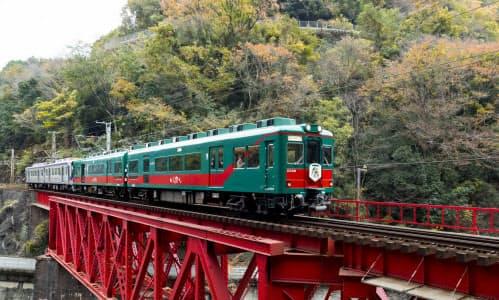 南海電鉄は20日から「天空」の運行を再開する