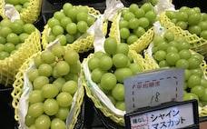 農産品の知財保護なぜ必要? 海外流出が輸出阻害