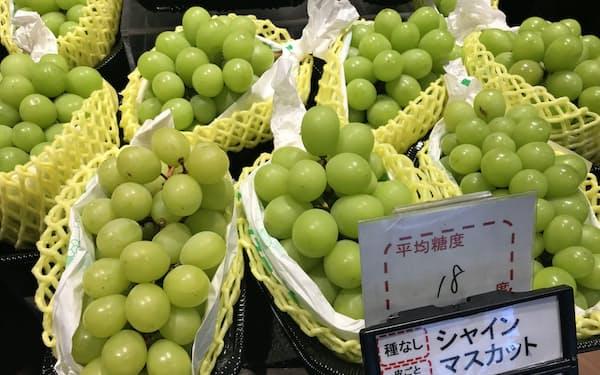 日本で育成された「シャインマスカット」は中国産や韓国産が出回り、日本産の輸出を阻害している