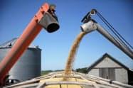 米卸売物価は2カ月ぶりに低下した(荷台に積み込まれる大豆、米イリノイ州)=ロイター