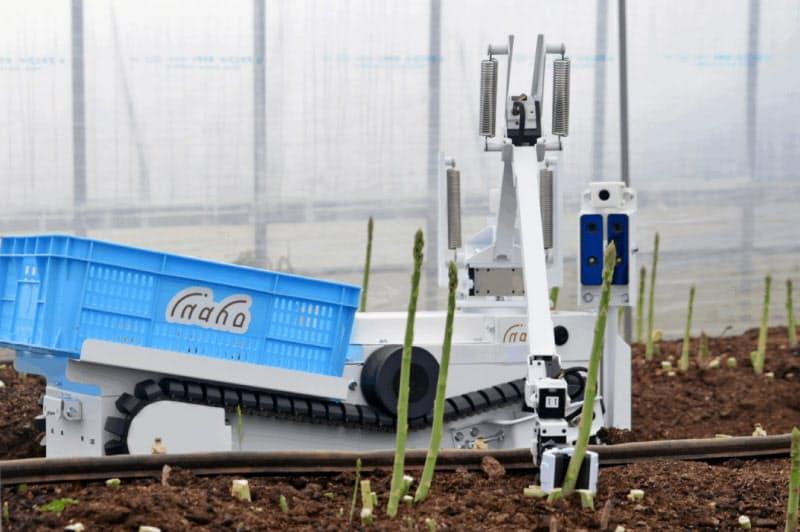 割安で5Gを活用できるようにする(写真はソラコムのIoT通信を使うinaho=神奈川県鎌倉市=の野菜収穫ロボット)