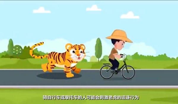 中国東北部の国立公園の管理当局が公開した、トラに出くわした場合の対処法を紹介するアニメ動画の一場面=共同