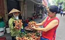 ライチ輸出世界2位ベトナム、悲願の日本市場開拓