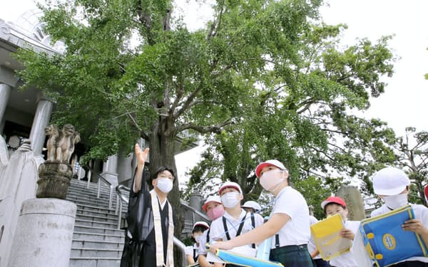 住職から被爆したイチョウの木に関する説明を聞く広島市立広瀬小学校の児童ら(7月22日、広島市中区の報専坊)