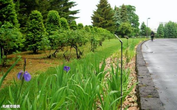 水害対策として雨水を貯留できる花壇の設置を進めている(札幌市)