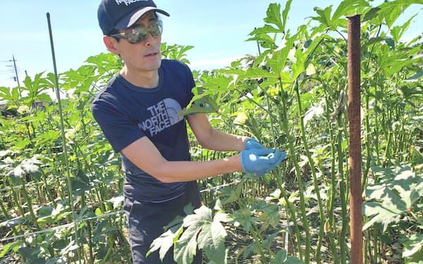今夏の帰省で農業に対する見方が変わった自分に気付く