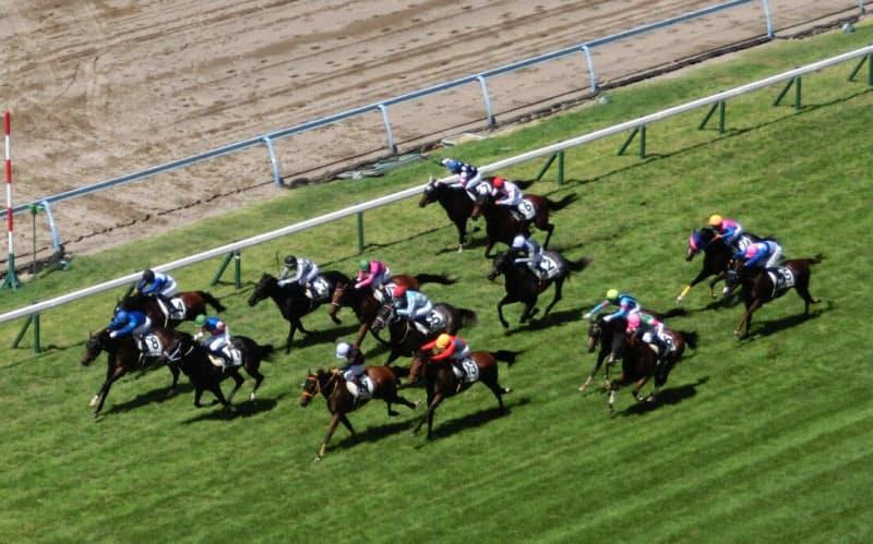 西日本地区の開催が3週間休止されるなど、今夏の競馬は例年と違う日程で行われた(8月29日の小倉競馬)