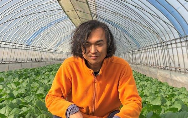 葉物野菜の有機栽培で事業を急拡大させている「ふしちゃんファーム」の伏田直弘氏(茨城県つくば市)
