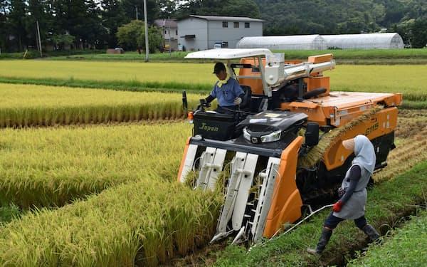 福島県大玉村では「ひとめぼれ」の収穫が始まった