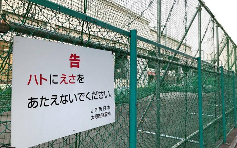 ハトに餌やりしないよう求める看板(8月、大阪市住吉区)
