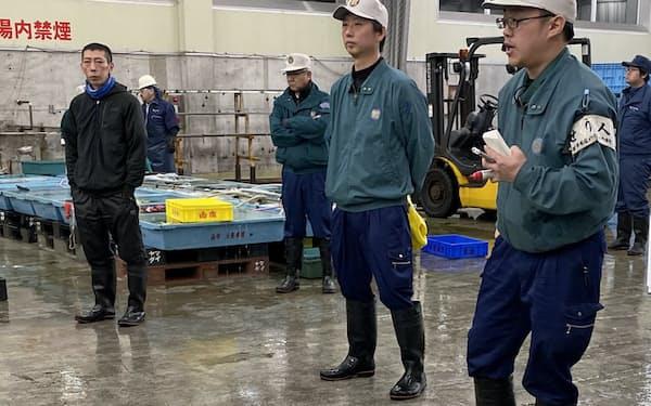スルメイカは漁獲回復が期待されている(函館市水産物地方卸売市場、2019年11月中旬)