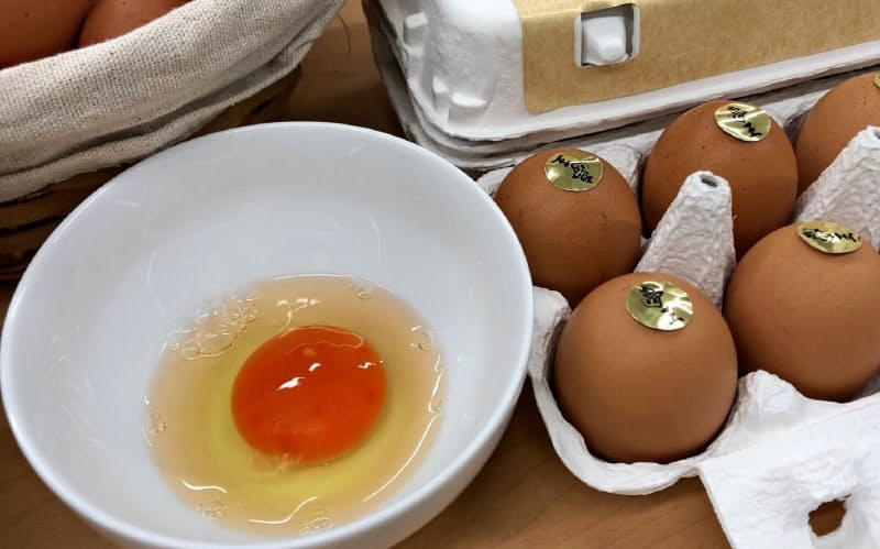 日本たまごかけごはん研究所は卵の魅力の発信に取り組んでいる