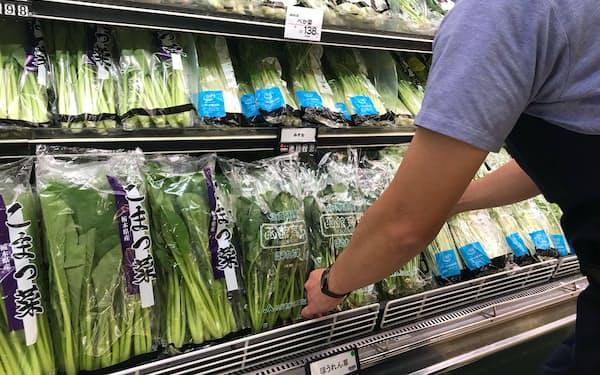 葉物野菜は種類も豊富になった(9月、都内のスーパー)
