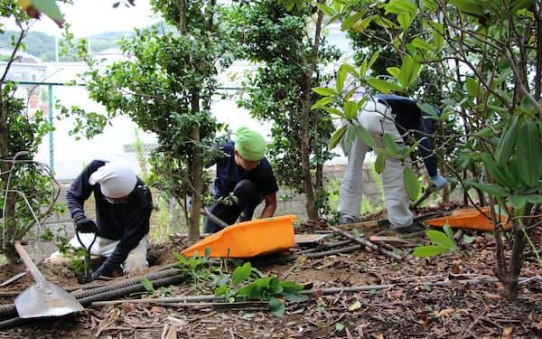 園の周囲を手作業で掘り返して防水壁を立てる(栃木県足利市のあしかがフラワーパーク)