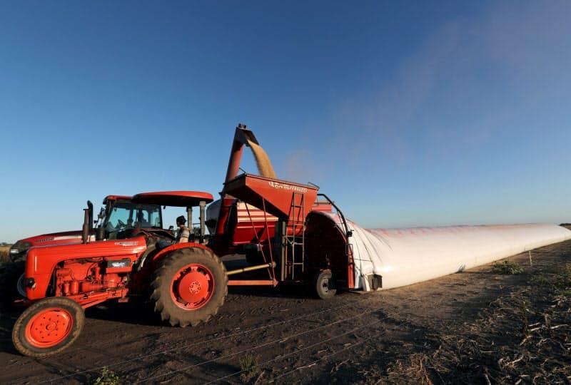 大豆はアルゼンチンにとり主要輸出品だ(4月、ブエノスアイレス郊外)=ロイター