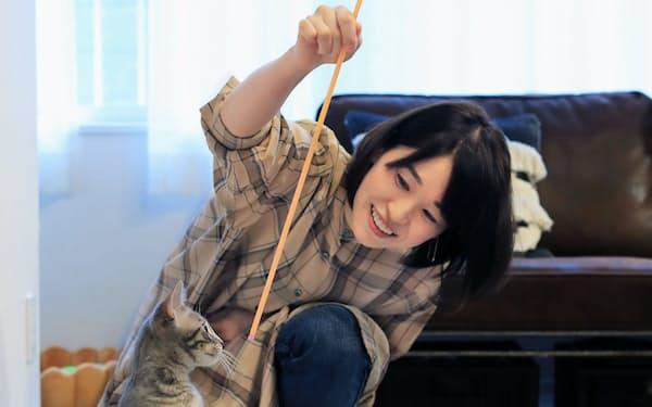 ほぼ在宅勤務になったのを機に2匹の猫を飼い始めた佐賀晶子さん(都内)