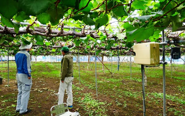 藤沢正実さんのハウスにはIT機器とカメラが設置されている(長野県中野市)
