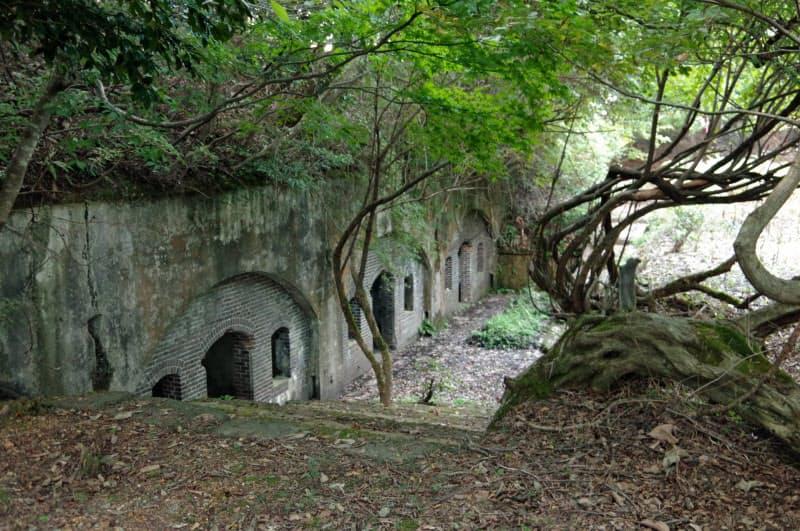 吉坂堡塁跡は山中の森に埋もれている(福井県高浜町)