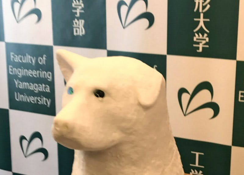 本物のような肉球を持つ山形大の犬型ロボット「ゲルハチロイド」(山形県米沢市)