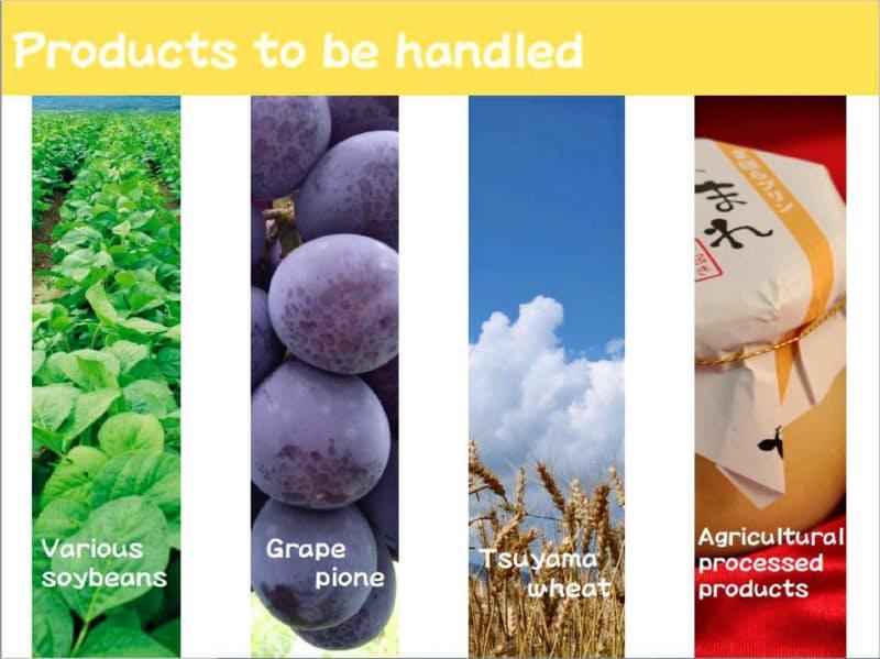 首都圏などで使う12bet交流群農産品PRの展示パネル案