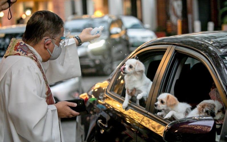 ウイルス感染防止のため、車に乗ったままカトリック司祭から祝福を受ける犬(4日、フィリピン・ケソン市)=ロイター