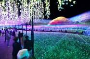 「奇跡の大樹」をテーマにしたイルミネーション(23日、三重県桑名市)