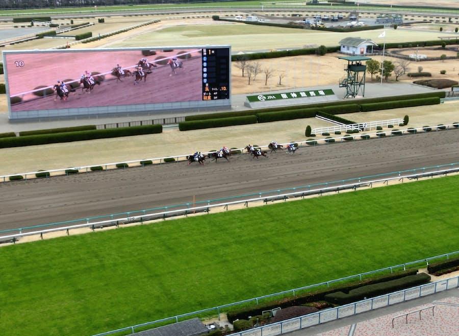 G1 日程 2020 競馬