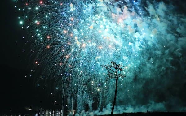 花火の青い光に浮き上がる「奇跡の一本松」(31日、岩手県陸前高田市)=小谷裕美撮影