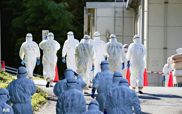 鳥インフルエンザが発生した養鶏場に入る防護服姿の関係者(5日、香川県三豊市)=共同